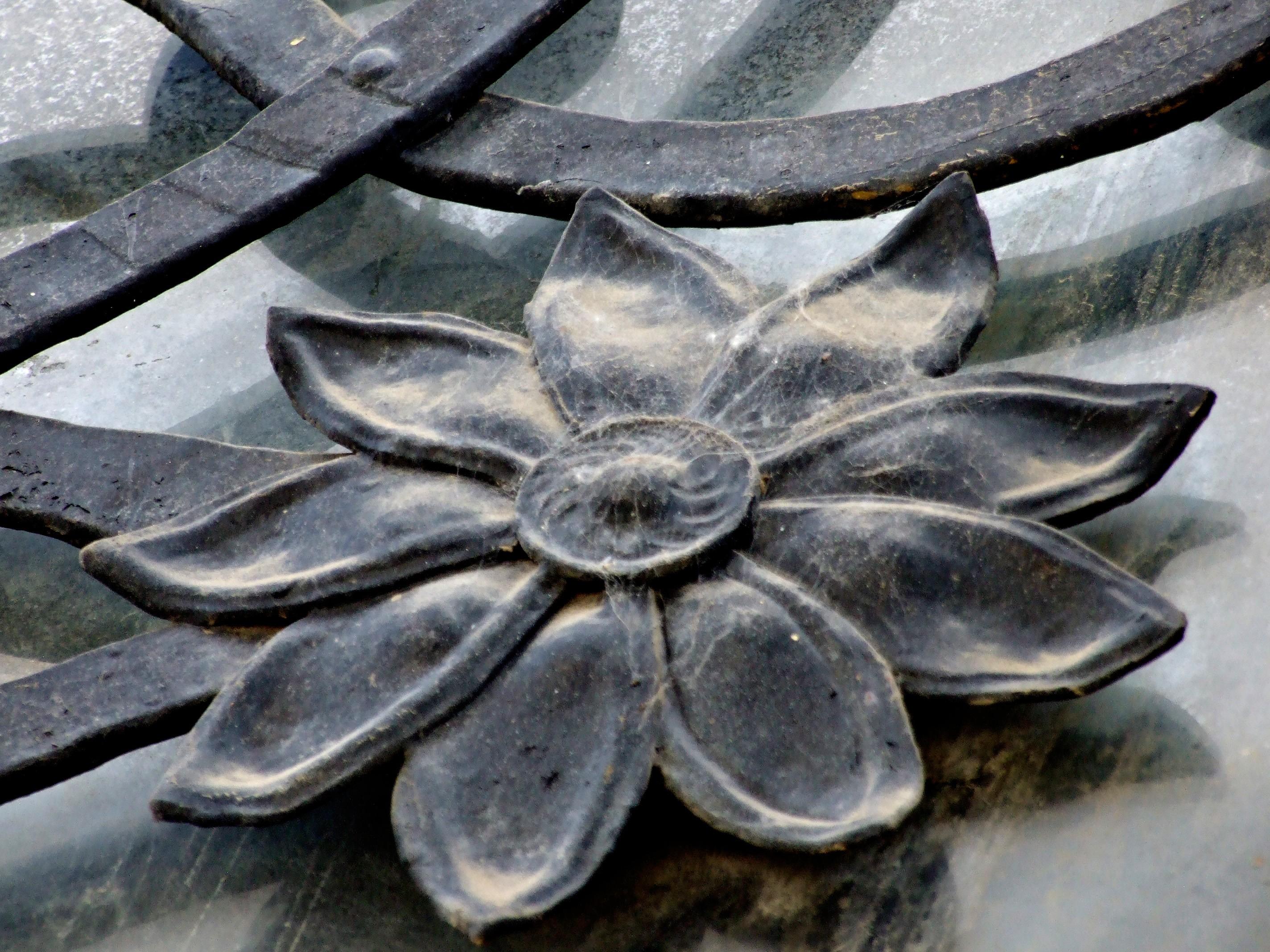 Cvet iznad vrata