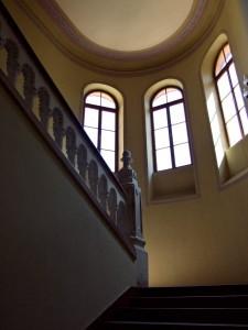 stepenicenet