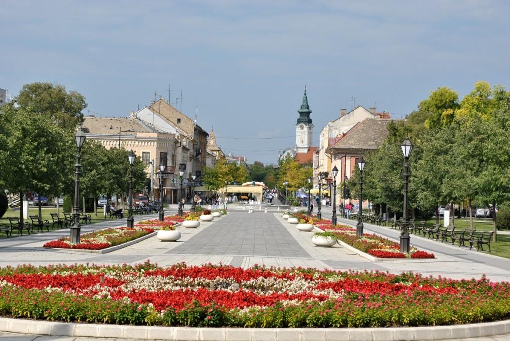 Pogled od Županijskog dvora ka Trgu Svetog Đorđa