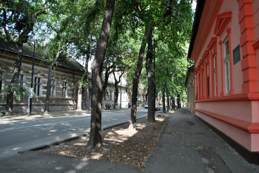 Somborskim ulicama
