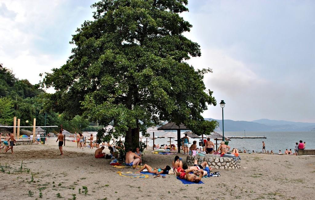Na plažu stigle u Dunav se bućnule