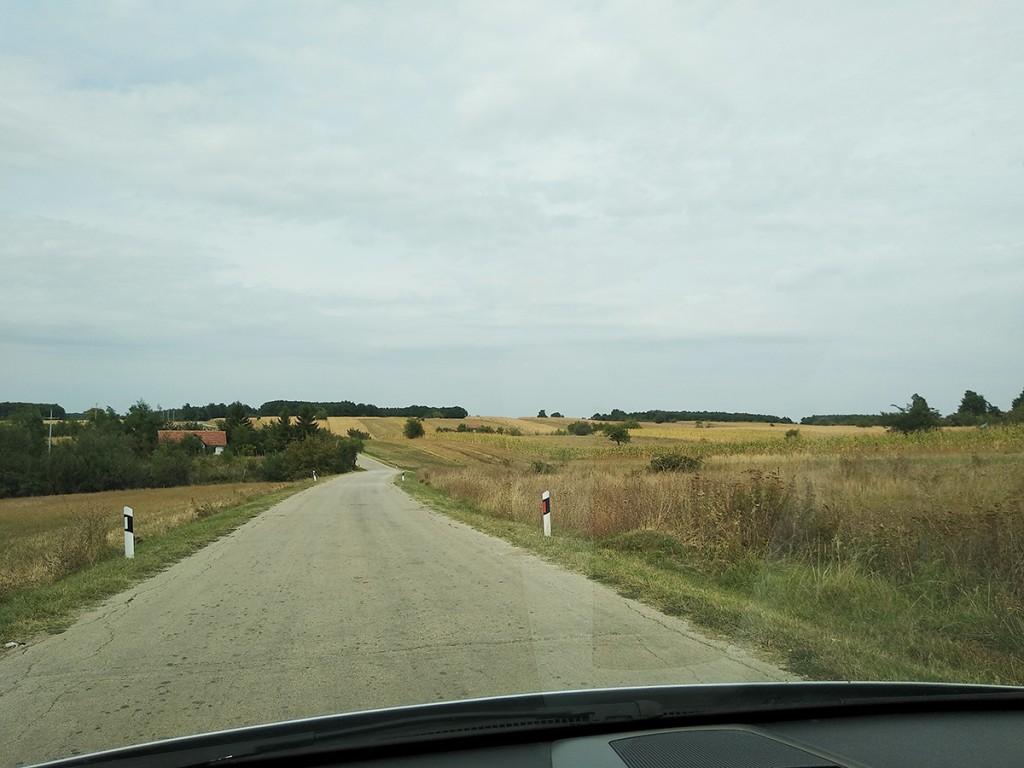 Pogled iz auta, na putu za Rogljevo