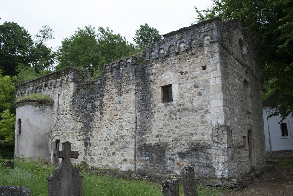 gorovic40