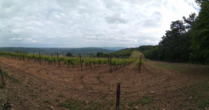 panorama oplenac